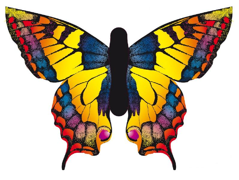 Cerf volant monofil - Papillon dessin couleur ...